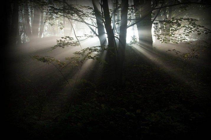 Tajemné světlo