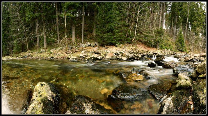 Dolnodvorský potok