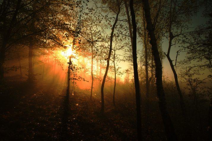 Brzy ráno, vysoko, na konci světa, země plná světla