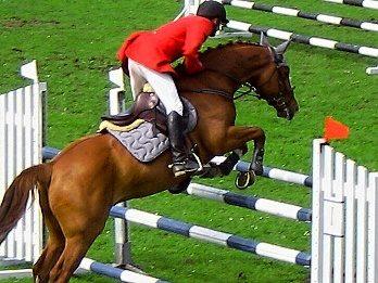 Hoď své srdce za překážku a tvůj kůň  za ním sám skočí ..  (jezdecké rčení)