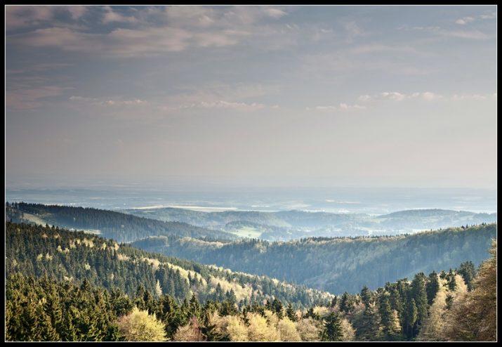 Orlické hory - Deštné