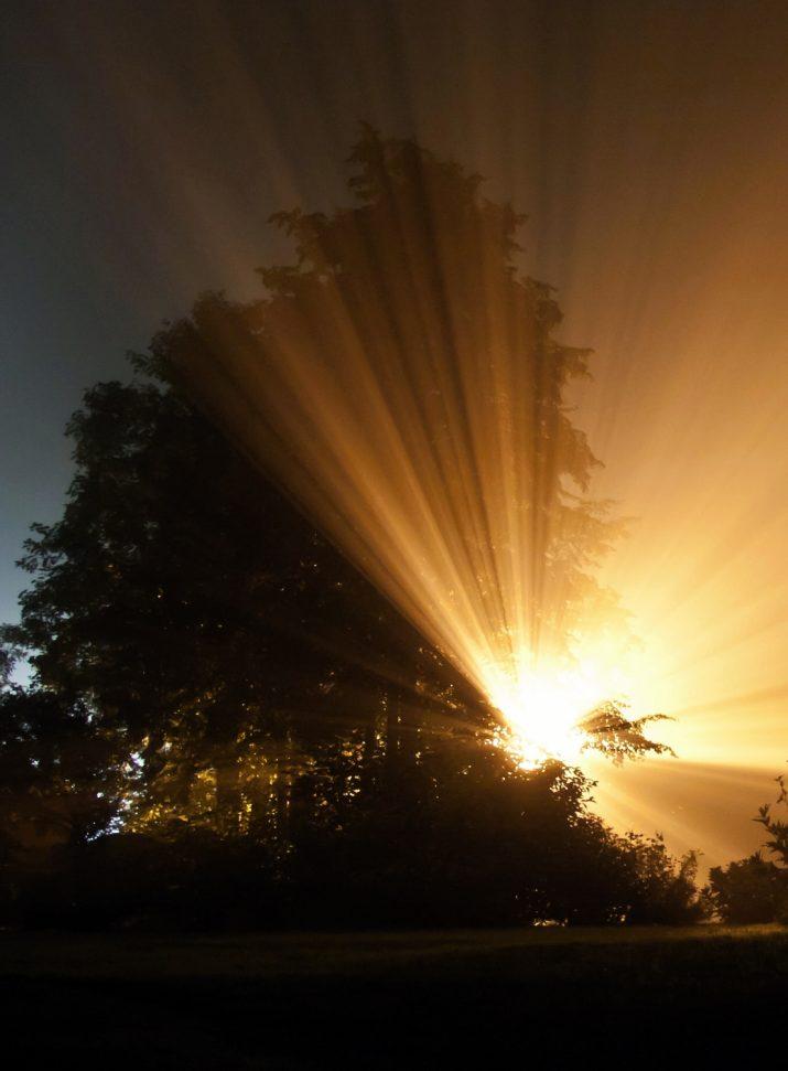noční mlha
